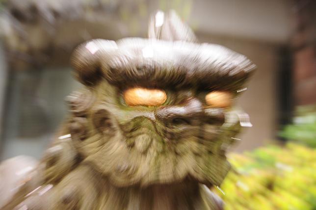 14白山神社狛犬.jpg