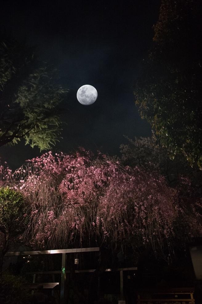 19白山神社.jpg