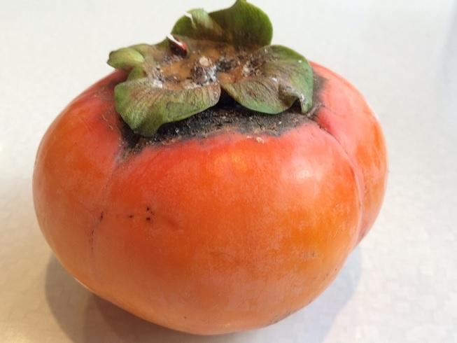 2016.10.22柿のカレー2.jpg