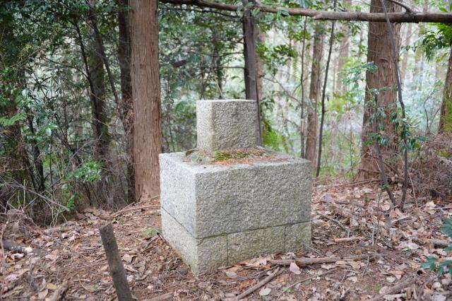 3測量石標2.JPG