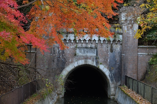 8琵琶湖疎水.jpg