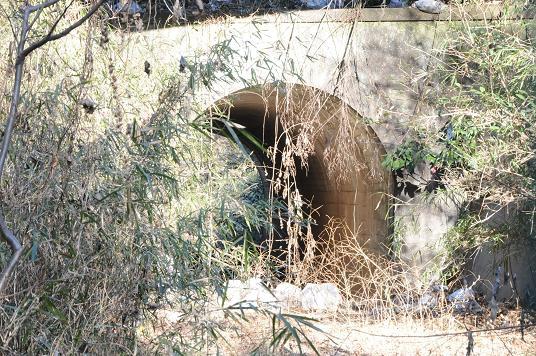 6号隧道2.jpg