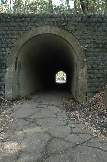 トンネル大.jpg