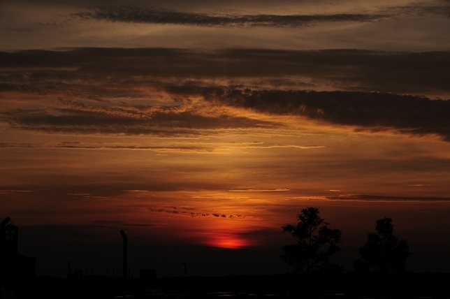 1 0804夕陽.jpg