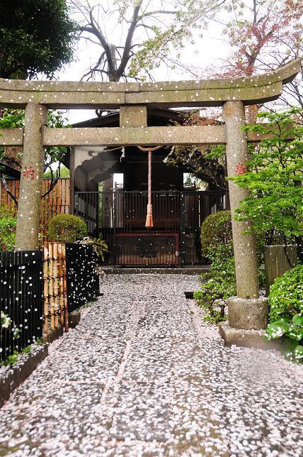 16八幡神社.jpg