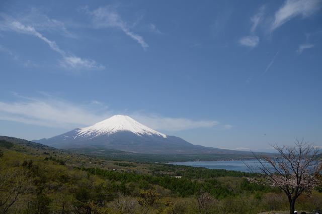 3山中湖と富士山.jpg
